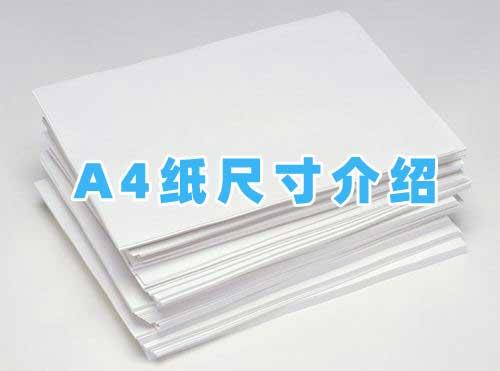 a4纸尺寸 标准a4纸尺寸大小是多少